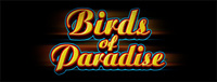 At Tulalip Bingo & Slots north of Lynnwood near Marysville, WA you can play our Vegas-style video slot machines like the intriguing Birds of Paradise!
