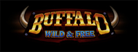 At Tulalip Bingo & Slots north of Lynnwood and Everett, WA you can play our Vegas-style video slot machines like the exciting Buffalo Wild & Free!