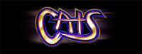 Play slots at Tulalip Bingo & Slots just north of Everett on I-5 like the super fun Cats gaming machine.