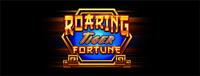 Play slots at Tulalip Bingo & Slots just north of Everett on I-5 like the super fun Roaring Tiger Fortune video gaming machine.