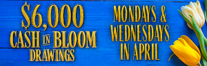 Come in to Tulalip Bingo & Slots north of Lynnwood near Marysville on I-5 and enter the $6,000 Cash in Bloom Drawings in April!