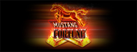 Come to Tulalip Bingo near Marysville and play the Mustang Fortune slot machine!