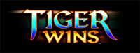 Play slots at Tulalip Bingo & Slots just north of Bothell on I-5 like the super fun Tiger Wins video gaming machine.