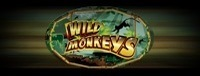 Play the Wild Monkeys Class II casino slot machines at Tulalip Bingo near Marysville and Everett
