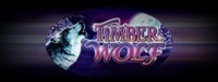 Play the Timber Wolf Class II casino slot machines at Tulalip Bingo near Marysville and Everett