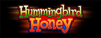 Play exciting slots at Tulalip Bingo near Marysville, WA on I-5, like Hummingbird Honey!