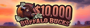 Tulalip Bingo $10,000 Buffalo Bucks Spin & Win Saturdays in September 10 AM to 10 PM
