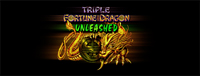 Play slots at Tulalip Bingo & Slots just north of Everett on I-5 like the super fun Triple Fortune Dragon- Unleashed gaming machine.