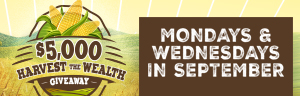 Play at Tulalip Bingo near Marysville, WA on I-5 Mondays and Wednesdays in September to enter to win the $5,000 Harvest the Wealth Giveaway!